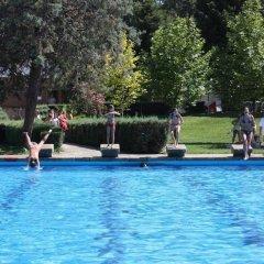 Layos Hostel - Camp бассейн