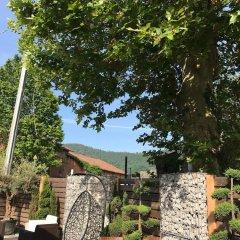Отель Ai colli Италия, Региональный парк Colli Euganei - отзывы, цены и фото номеров - забронировать отель Ai colli онлайн