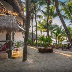 Отель Beachfront Hotel La Palapa - Adults Only Мексика, Остров Ольбокс - отзывы, цены и фото номеров - забронировать отель Beachfront Hotel La Palapa - Adults Only онлайн фото 7