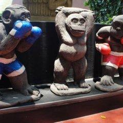 Отель Papa Monkey Resort фото 2