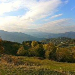 Отель Melanya Mountain Retreat Болгария, Ардино - отзывы, цены и фото номеров - забронировать отель Melanya Mountain Retreat онлайн приотельная территория фото 2