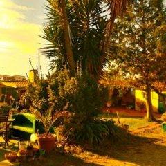 Отель SPH - Sintra Pine House фото 5