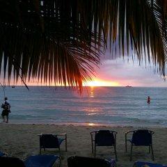 Отель Whistling Bird Resort пляж