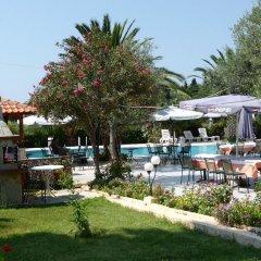 Отель Olympic Bibis Hotel Греция, Метаморфоси - отзывы, цены и фото номеров - забронировать отель Olympic Bibis Hotel онлайн бассейн фото 3
