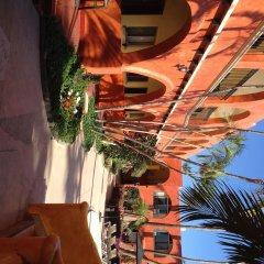 Отель Mar de Cortez Мексика, Кабо-Сан-Лукас - отзывы, цены и фото номеров - забронировать отель Mar de Cortez онлайн фото 8
