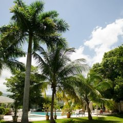 Отель Seawind On the Bay Apartments Ямайка, Монтего-Бей - отзывы, цены и фото номеров - забронировать отель Seawind On the Bay Apartments онлайн фото 2