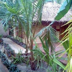 Отель Robinson Crusoe Island Фиджи, Вити-Леву - отзывы, цены и фото номеров - забронировать отель Robinson Crusoe Island онлайн фото 2