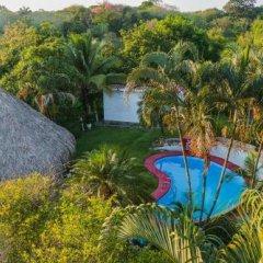 Отель Colibri Hill Resort Гондурас, Остров Утила - отзывы, цены и фото номеров - забронировать отель Colibri Hill Resort онлайн приотельная территория фото 2