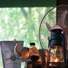 Отель Mahoora Tented Safari Camp - Kumana Шри-Ланка, Яла - отзывы, цены и фото номеров - забронировать отель Mahoora Tented Safari Camp - Kumana онлайн интерьер отеля