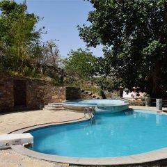 Отель Kumbhalgarh Forest Retreat бассейн фото 3