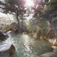 Отель Wataya Besso Кашима бассейн фото 3
