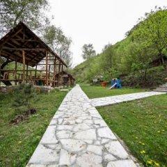 Отель Belveder Eco Rest zone детские мероприятия фото 2