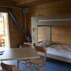 Отель Camping Amerika Чехия, Франтишкови-Лазне - отзывы, цены и фото номеров - забронировать отель Camping Amerika онлайн детские мероприятия