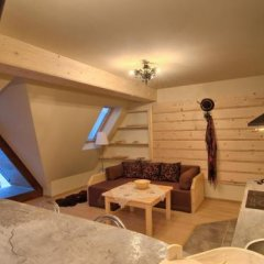 Апартаменты Visitzakopane Eco Apartments Косцелиско развлечения