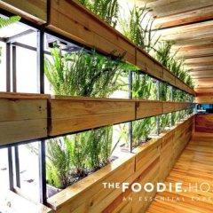 The Foodie Hostel Мехико балкон