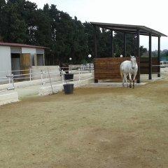Отель Apollonion Country House Сиракуза с домашними животными
