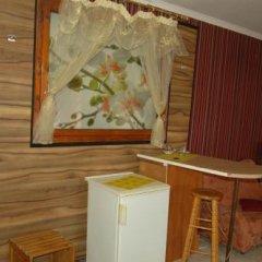 Stivan Iskar Hotel удобства в номере