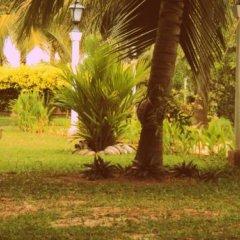 Hotel Lagoon Paradise фото 6