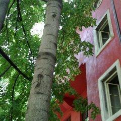 Отель Red Bed & Breakfast Болгария, София - отзывы, цены и фото номеров - забронировать отель Red Bed & Breakfast онлайн фото 4