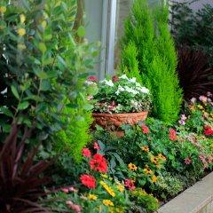Отель Monterey Akasaka Япония, Токио - отзывы, цены и фото номеров - забронировать отель Monterey Akasaka онлайн фото 2