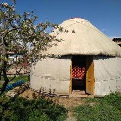 Отель B&B at Bailanysh Кыргызстан, Каракол - отзывы, цены и фото номеров - забронировать отель B&B at Bailanysh онлайн фото 4