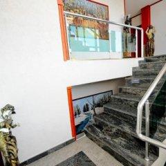 Отель Lubjana Албания, Тирана - отзывы, цены и фото номеров - забронировать отель Lubjana онлайн балкон