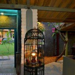 Отель Morning Star Guest House гостиничный бар