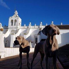 Convento do Espinheiro, Historic Hotel & Spa Эвора приотельная территория фото 2