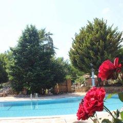 Kas Dogapark Турция, Патара - отзывы, цены и фото номеров - забронировать отель Kas Dogapark онлайн бассейн фото 3