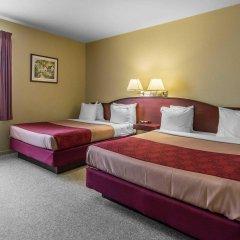 Отель Econo Lodge Montmorency Falls Канада, Буашатель - отзывы, цены и фото номеров - забронировать отель Econo Lodge Montmorency Falls онлайн удобства в номере