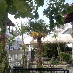 Отель Elinotel Polis Hotel Греция, Ханиотис - отзывы, цены и фото номеров - забронировать отель Elinotel Polis Hotel онлайн фото 16