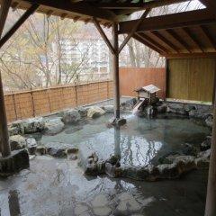 Отель Kinugawa Gyoen Япония, Никко - отзывы, цены и фото номеров - забронировать отель Kinugawa Gyoen онлайн бассейн фото 2