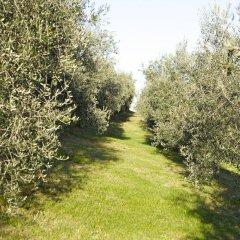 Отель Agriturismo Marani Италия, Лимена - отзывы, цены и фото номеров - забронировать отель Agriturismo Marani онлайн фото 2