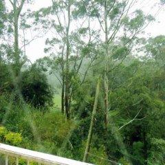 Отель Park View Guest House Шри-Ланка, Нувара-Элия - отзывы, цены и фото номеров - забронировать отель Park View Guest House онлайн балкон