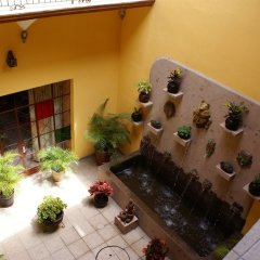 Casa Alebrijes Gay Hotel Гвадалахара фото 4