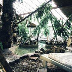 Гостиница Хижина СПА Украина, Трускавец - 1 отзыв об отеле, цены и фото номеров - забронировать гостиницу Хижина СПА онлайн фото 5