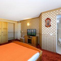 Отель Sv. Nikola Boutique Hotel Болгария, София - отзывы, цены и фото номеров - забронировать отель Sv. Nikola Boutique Hotel онлайн удобства в номере