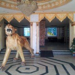 Отель Marhaba Residence ОАЭ, Аджман - отзывы, цены и фото номеров - забронировать отель Marhaba Residence онлайн с домашними животными