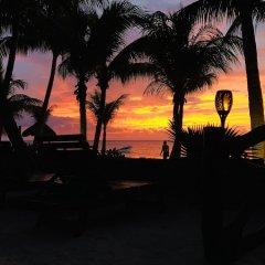 Отель Beachfront Hotel La Palapa - Adults Only Мексика, Остров Ольбокс - отзывы, цены и фото номеров - забронировать отель Beachfront Hotel La Palapa - Adults Only онлайн пляж фото 2