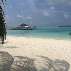 Отель Club Blu Мальдивы, Мале - отзывы, цены и фото номеров - забронировать отель Club Blu онлайн пляж