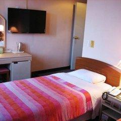 Brown Tourist Hotel удобства в номере фото 2