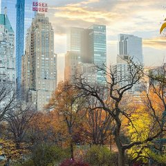 Отель JW Marriott Essex House New York США, Нью-Йорк - 8 отзывов об отеле, цены и фото номеров - забронировать отель JW Marriott Essex House New York онлайн фото 3