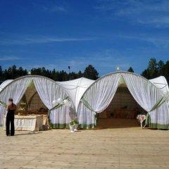 Гостиница Лесная фото 3