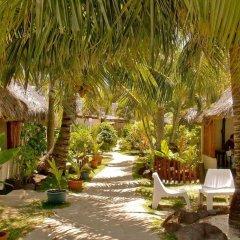 Отель Village Temanuata Французская Полинезия, Бора-Бора - отзывы, цены и фото номеров - забронировать отель Village Temanuata онлайн фото 17