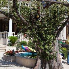 Гостиница Дубай фото 12