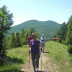 Отель Melanya Mountain Retreat Болгария, Ардино - отзывы, цены и фото номеров - забронировать отель Melanya Mountain Retreat онлайн фото 7