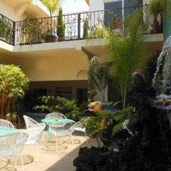 Отель Hostal Centro Historico Oasis Мехико бассейн фото 3