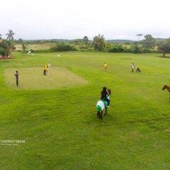 Отель Coconut Grove Beach Resort спортивное сооружение