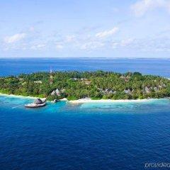 Отель Bandos Maldives Мальдивы, Бандос Айленд - 12 отзывов об отеле, цены и фото номеров - забронировать отель Bandos Maldives онлайн фото 6