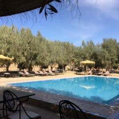 Отель Galaxy Desert Camp Merzouga Марокко, Мерзуга - отзывы, цены и фото номеров - забронировать отель Galaxy Desert Camp Merzouga онлайн бассейн